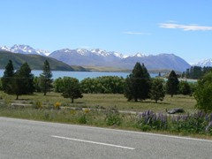 Suddenly Lake Tekapo appears