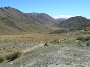 Lindis Pass in summer