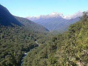 Looking toward Hollyford River Valley